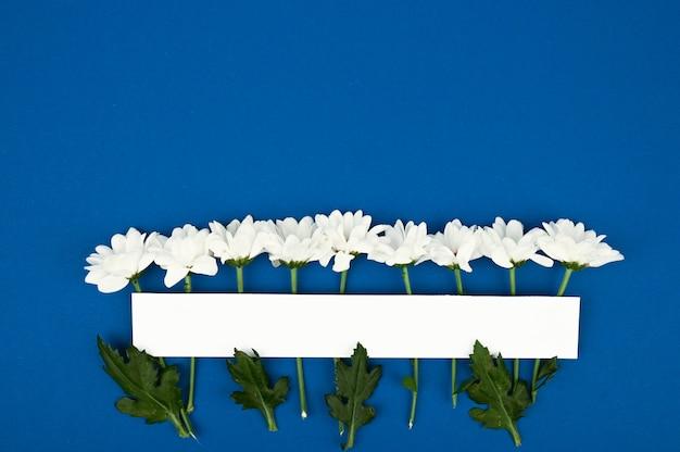 Espace copie papier vierge. cadre avec fleurs. chrysanthèmes blancs. fond bleu bouquet simple. carte de voeux