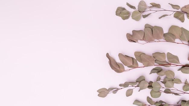 Espace de copie parallèle feuilles séchées