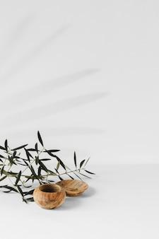 Espace de copie de plante minimale abstraite