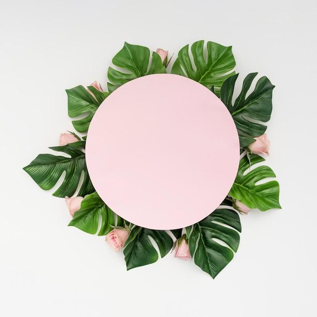 Espace copie rose entouré de feuilles de monstera