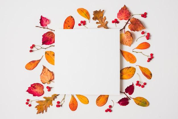 Espace copie vierge avec cadre de feuilles d'automne coloré