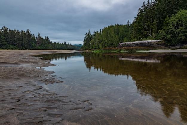 C'est l'embouchure de la rivière san josef dans le parc provincial de cape scott sur l'île de vancouver, colombie-britannique, canada.