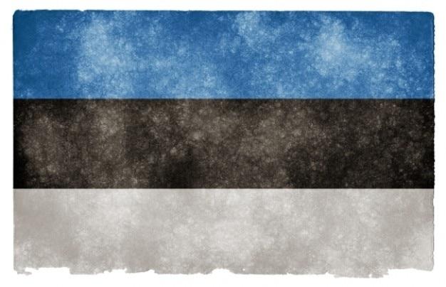 Estonie grunge flag