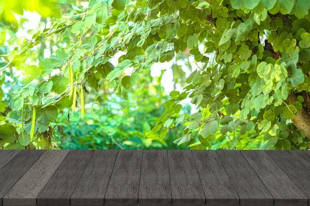 Étagères en bois noir au jardin