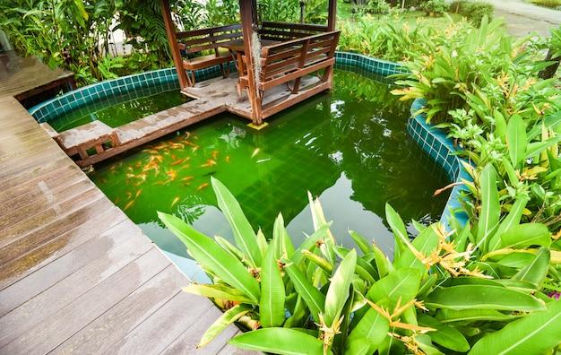 Étang à poissons avec carpe coloré koi nageant sous l'eau dans le jardin