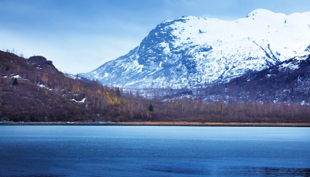 États-unis, alaska, glacier bay national park, champ de glace, prairies, parc national
