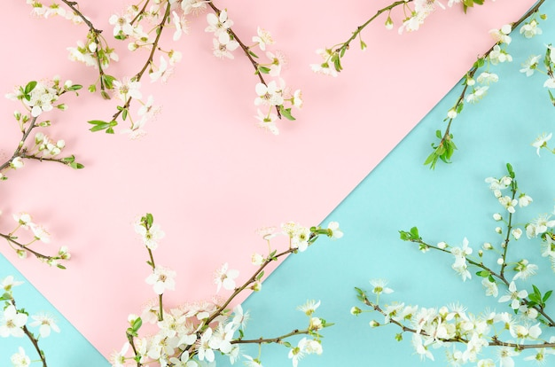 Été bicolore fond rose et menthe avec des branches d'arbre fleurir arrangement frontière.