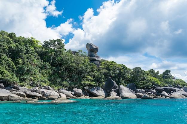Été, nature tropicale, paysage marin, île