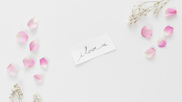 Étiquette avec titre entre collection de pétales de roses fraîches et brindilles de plantes