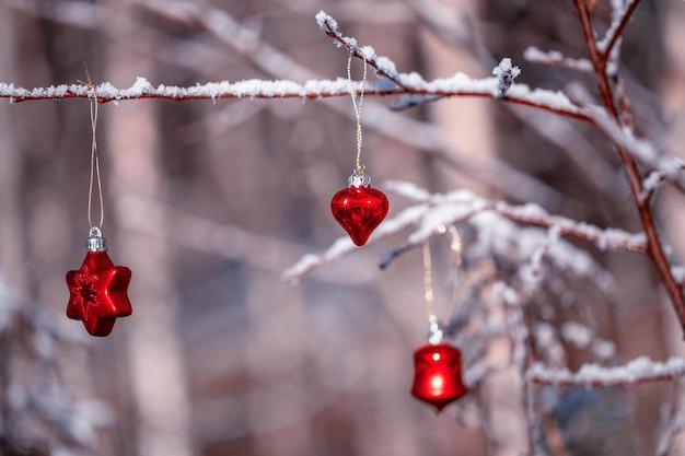 Étoile et coeur rouges de noël sur des brindilles et des brins couverts de givre dans la forêt