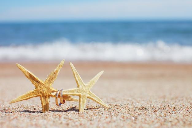 Étoile de mer avec anneaux de mariage sur la plage