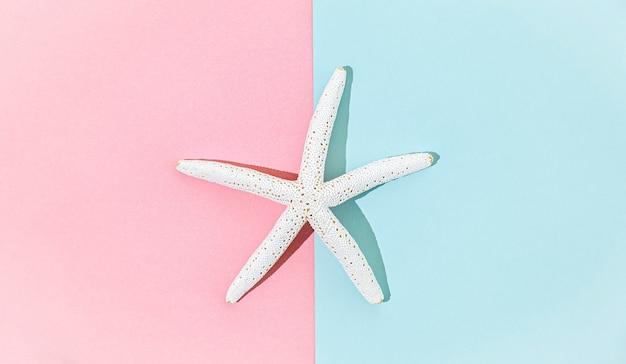 Étoile de mer blanche sur fond rose et bleu symétrique, vue de dessus