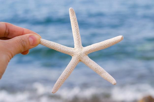 Étoile de mer blanche à la main sur fond de mer