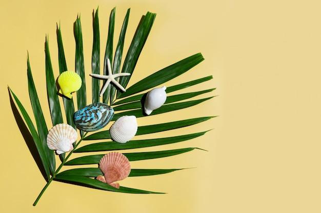 Étoile de mer avec des coquillages sur des feuilles de palmiers tropicaux sur fond jaune.