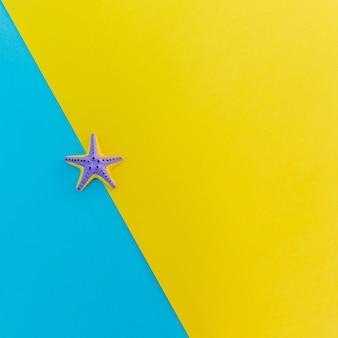 Étoile de mer décorative sur une surface brillante