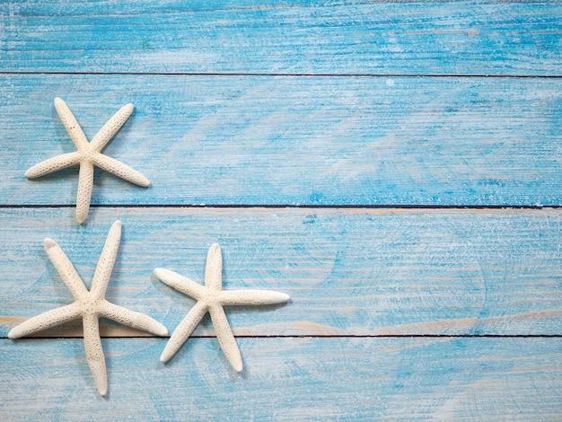 Étoile de mer sur un fond de mer bleue