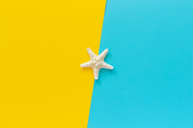 Une étoile de mer sur fond de papier bleu et jaune