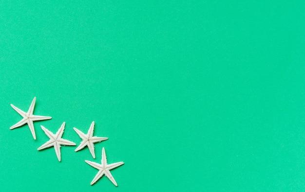 Étoile de mer sur fond vert pour le concept de saison d'été