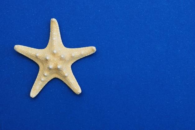 Étoile de mer isolée sur fond bleu, espace copie vacances d'été.