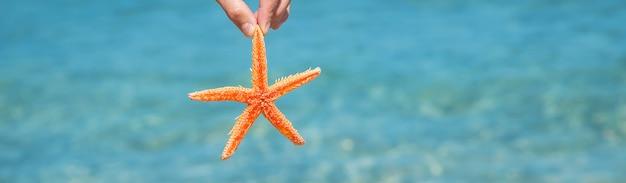 Étoile de mer sur la plage entre les mains d'un homme.