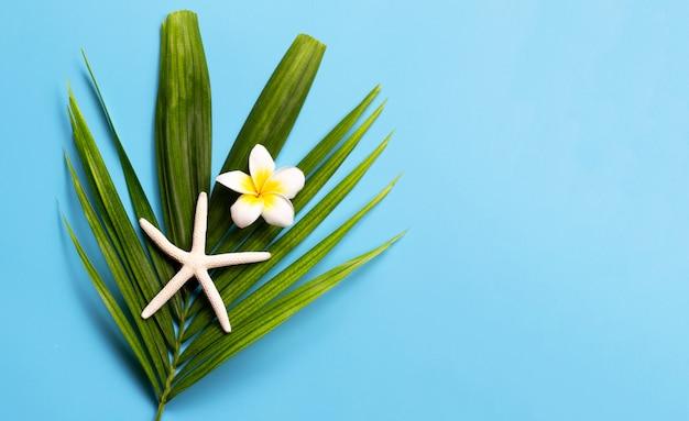 Étoile de mer avec plumeria ou fleur de frangipanier sur des feuilles de palmier tropical sur fond bleu. profitez du concept de vacances d'été.