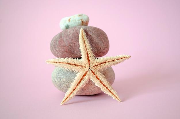 Étoile de mer sur rose et trois pierres équilibrées