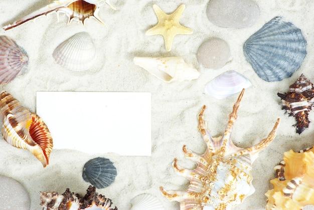 Étoiles de mer et coquillages une carte postale vierge sur le sable