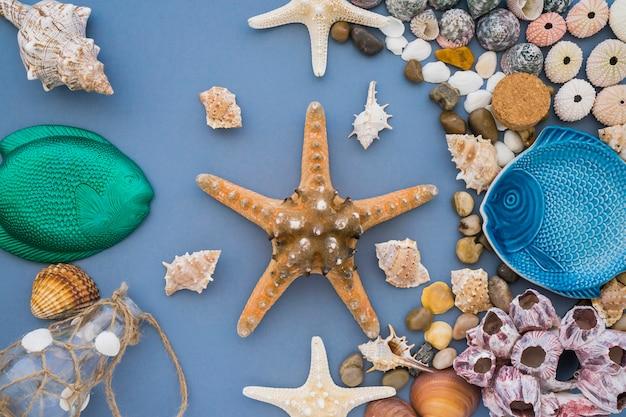 Étoiles de mer entourées d'éléments d'été