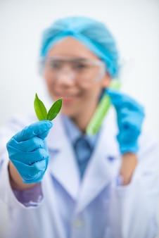 Etude d'extraits naturels pour la production cosmétique