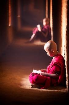 Étude de moine dans le temple