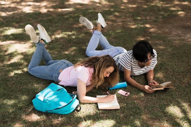Étudiants adolescents multiethniques qui étudient sur l'herbe