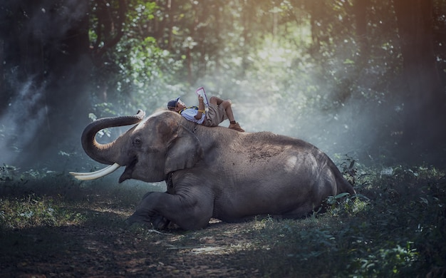 Étudiants dans des régions rurales de thaïlande. lecture de livres avec des éléphants, province de surin, thaïlande.