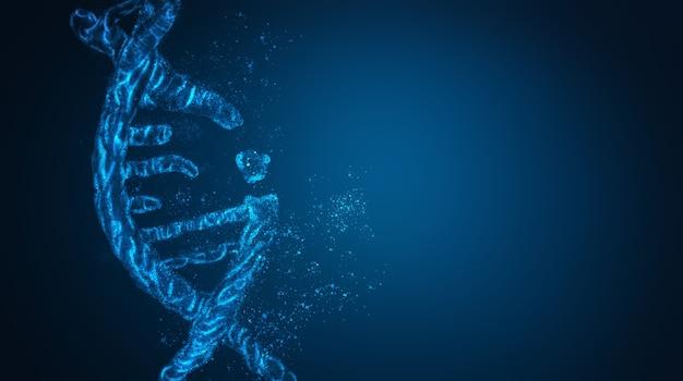 Etudier l'interface numérique de la molécule