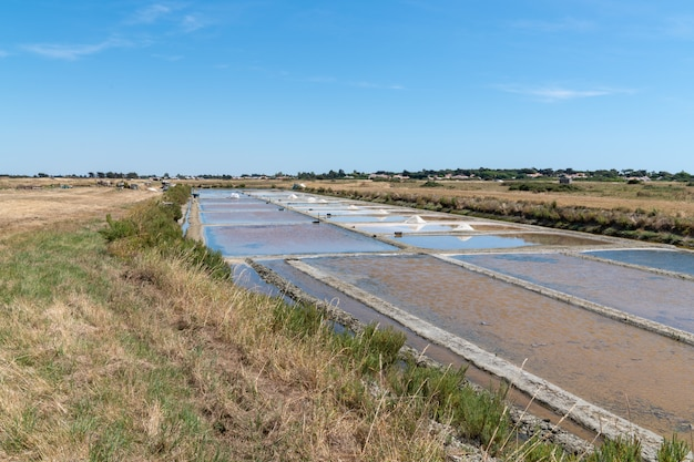 Évaporation du sel des marais sur l'île de noirmoutier en vendée france