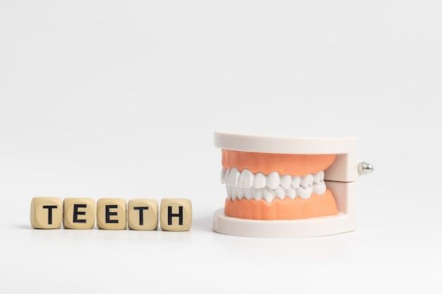 Exemples de prothèses en bonne santé. il est fabriqué à partir d'acrylique et de caoutchouc de bonne qualité.