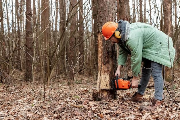 Exploitation forestière, travailleur en tenue de protection avec une scie à chaîne sciant le bois