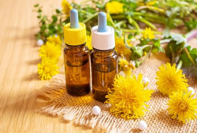 Extrait de pissenlit chélidoine dans une petite bouteille, traitement, médicament, teinture. mise au point sélective.nature