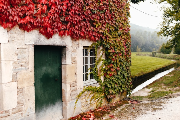 La façade d'un ancien bâtiment français est entrelacée de lierre rouge. ruisseau ou rivière près de la maison.