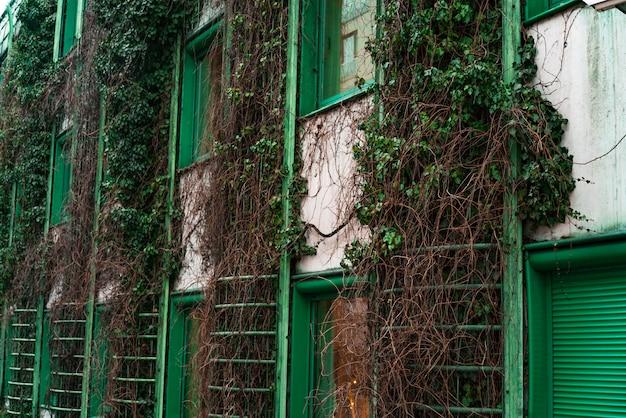 Façade de bâtiment vert avec des plantes sur les murs