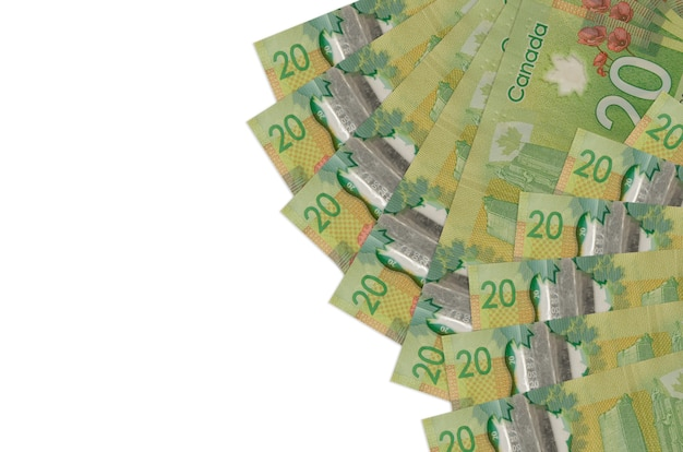 Factures en dollars canadiens portant sur une surface blanche