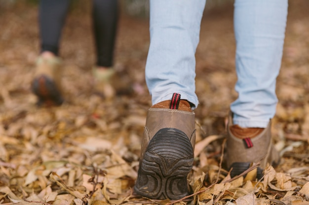 Faible section de femmes marchant dans la forêt