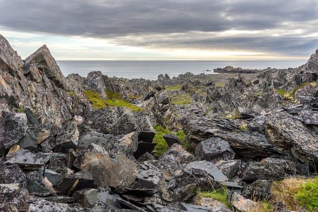 Falaises rocheuses sur la côte de la mer de barents, parc national de varangerhalvoya, péninsule de varanger, finnmark, norvège