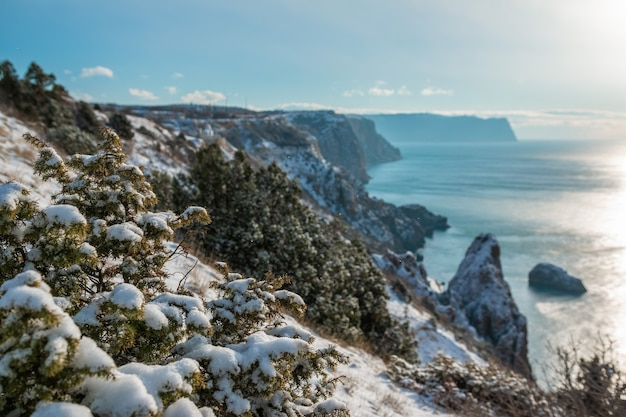 Falaises rocheuses couvertes de neige sur la mer hiver coucher de soleil sur le genévrier de la baie de la mer sous la neige concept de