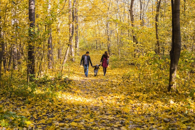 Famille, automne, concept de personnes - jeune famille métisse marchant dans le parc le jour de l'automne