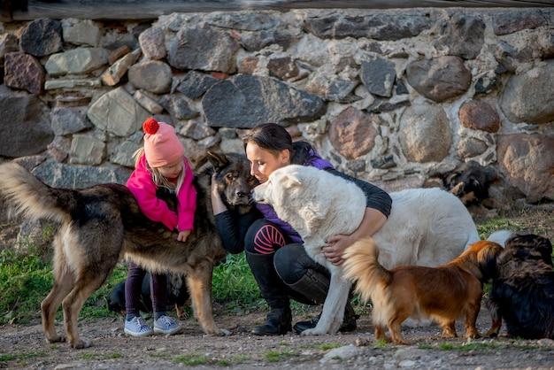 Famille heureuse mère et fille fille s'amusant avec beaucoup de chiens en plein air