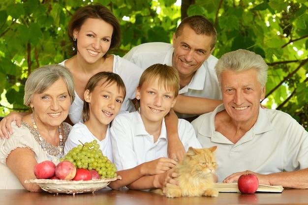 Famille heureuse : parents et enfants à une table mangeant des fruits en été avec le chat rouge