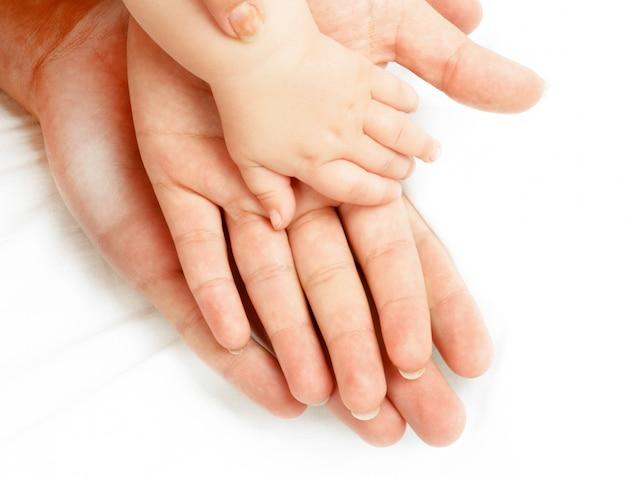 Famille de mains sur blanc