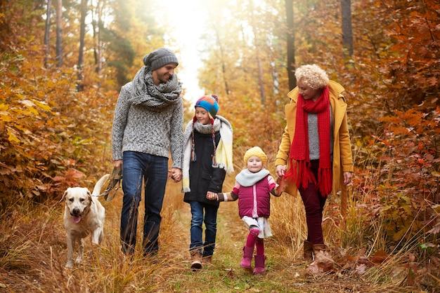 Famille marchant à travers la forêt