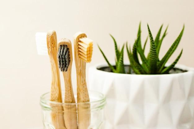 Famille mis trois brosses à dents en bambou, plante succulente en pot blanc sur gris clair. concept de salle de bain écologique. fermer. flou sélectif. . espace de copie de texte.