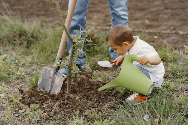 Famille avec petits fils plantent un arbre sur une cour